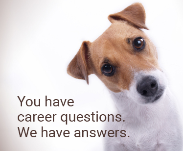 You have career questions. We have answers.
